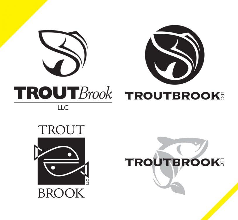 TroutBrook1