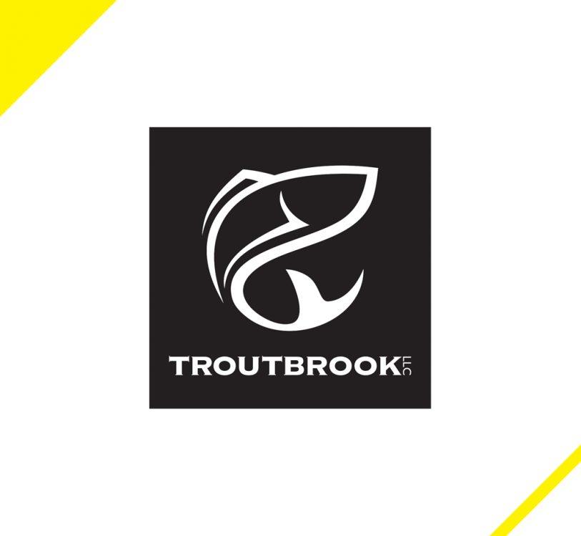 TroutBrook2